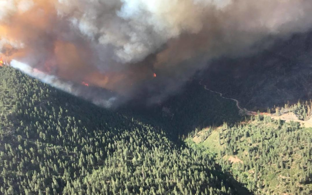 416 Fire Info and News