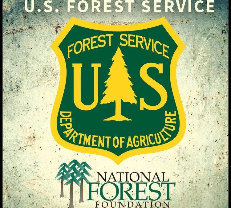 What's Open During the Forest Closure?