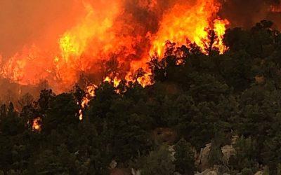 Pine Gulch Fire