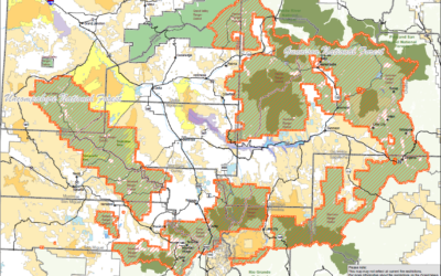 Uncompahgre and Gunnison National Forests to Implement Stage 1 Fire Restrictions