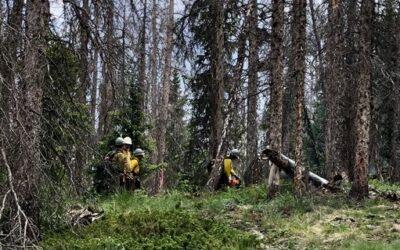6/24/21 Update Groundhog Park Fire Update