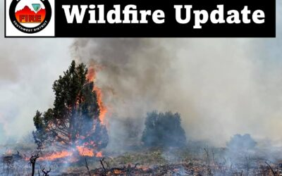 BLM Colorado and Utah fire crews respond to 43-acre fire in Southwest Colorado