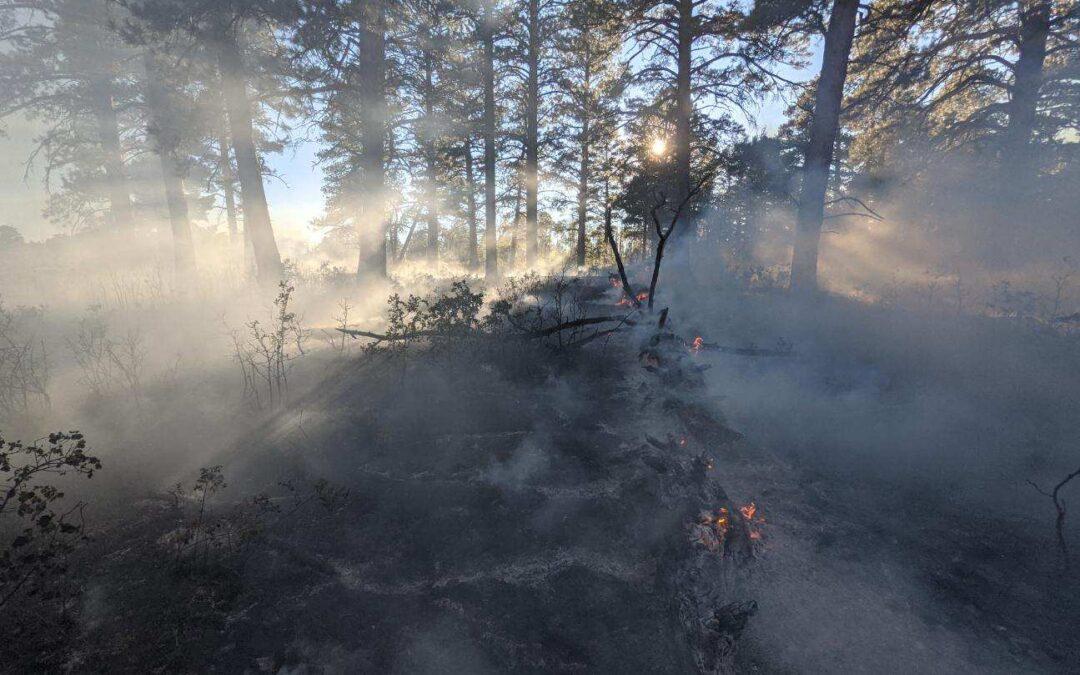 Payne Fire